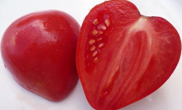 Сорт винограда джина