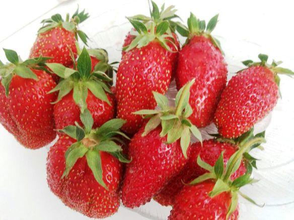 Дивная фото ягод