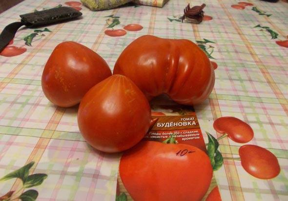 урожайность Буденновки