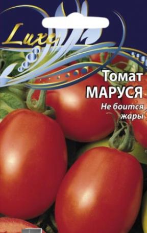 томат маруся выращивание уход
