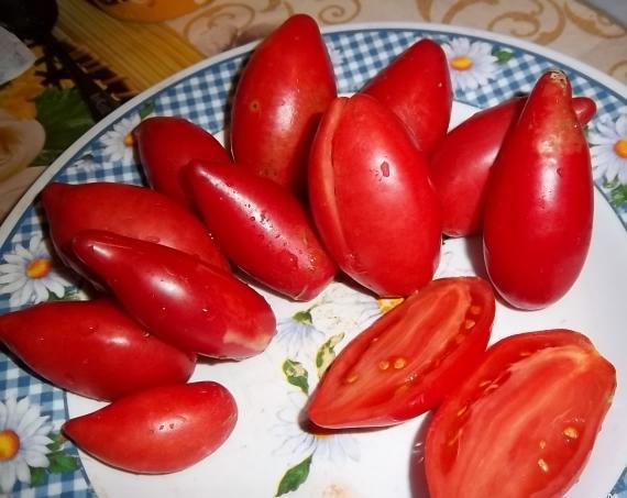 Фото помидоров сорта Супермодель