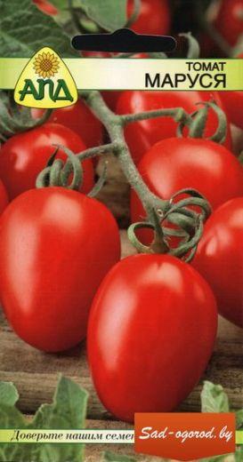 томат маруся