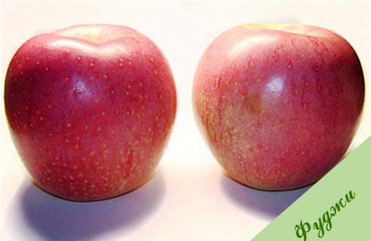 Почему плоды пользуются спросом?